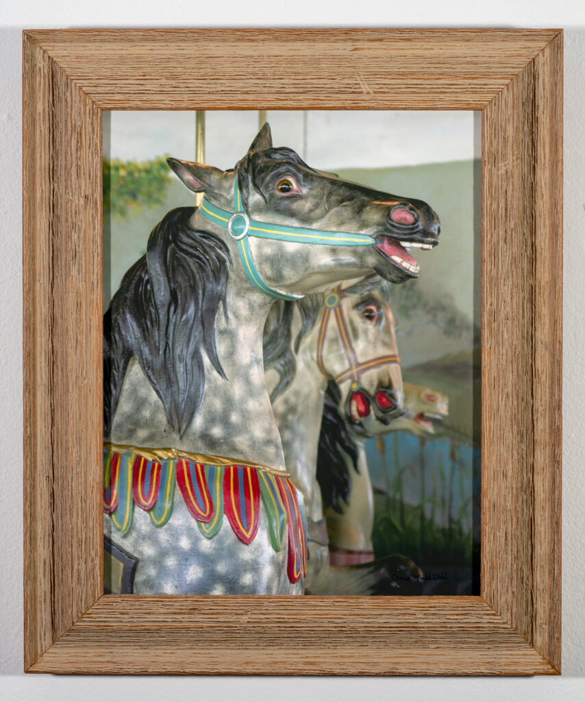 BEST PHOTOGRAPHY  - CONNIE MAEDEL-DIEHL - Weona Park Carousel - Photography - 18x15 - $175