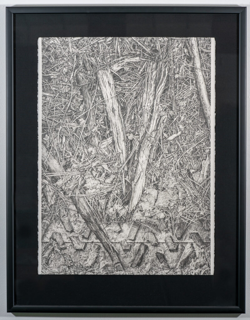 HONORABLE MENTION 2D - LARRY BUTCHER - Earthsign V... a Sign of Peace - Graphite - 39x30.5 - $3500
