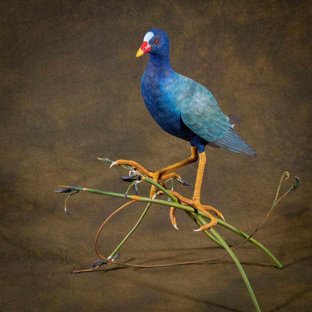 HONORABLE MENTION 3D - RON DERDOWSKI - Purple Gallinule on Alligator Fern - Mixed Media, Oil Paint - 16.5x10.5x10