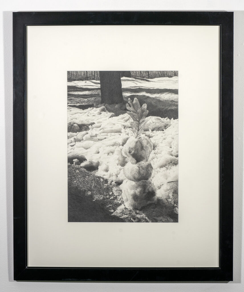 HONORABLE MENTION 2D -  SUZANNE K. THOMAS - Going, Going, Gone - Graphite - 33.25x27 - $1000