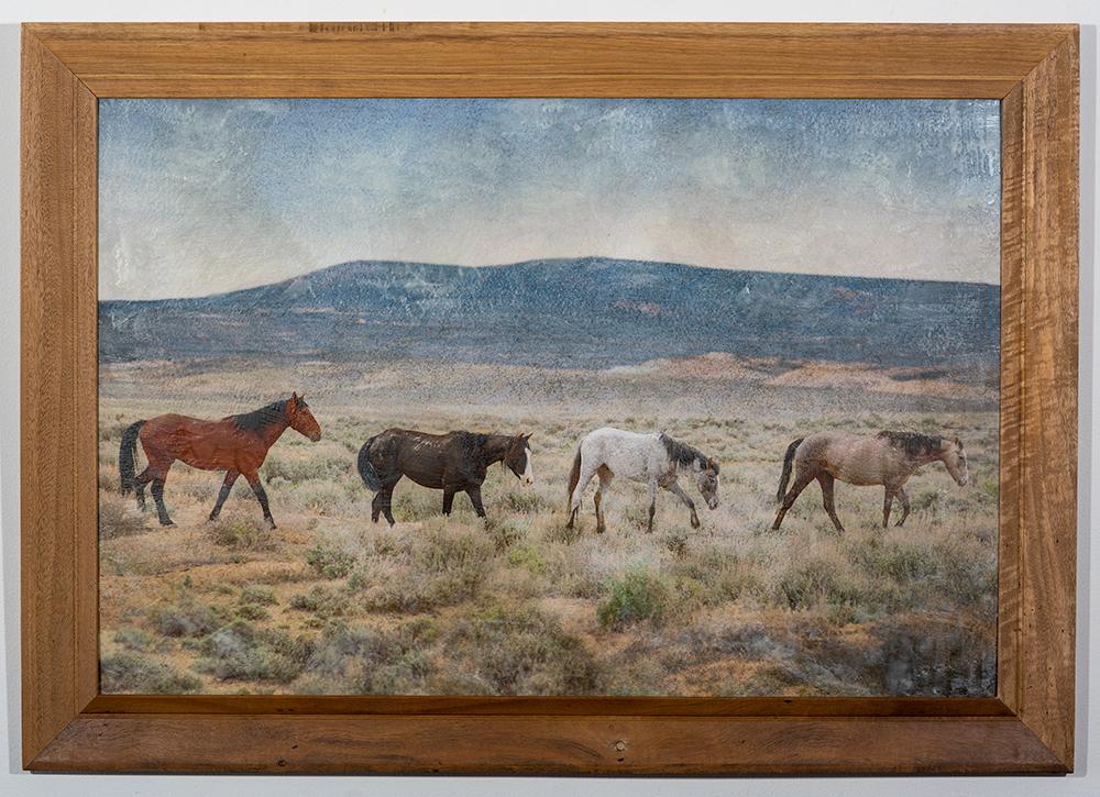Freedom (24 x 36 - photo encaustic), C. Jewell, $350