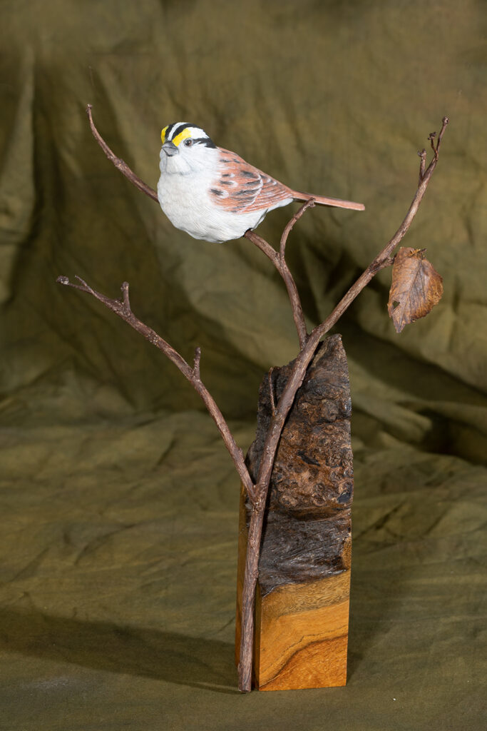 RON DERDOWSKI - White Throated Sparrow - Wood, Brass, and Paper - 9x12x4 - $300